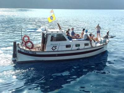 The whale watching boat Pura Vida on La Gomera