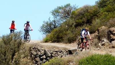 Mountain bike tour in La Gomera